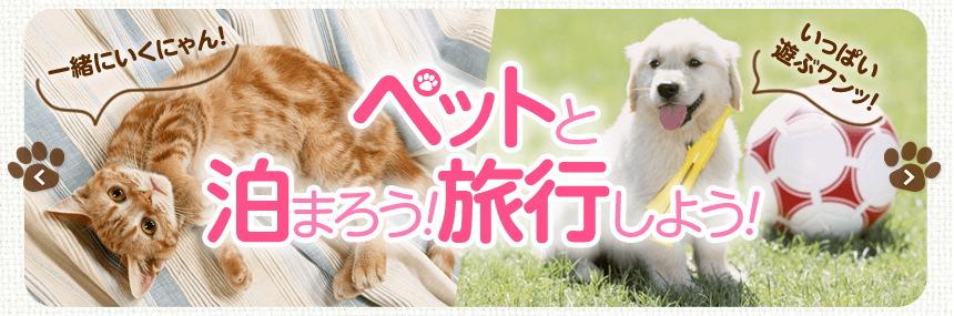 るるぶトラベル ペットと泊まろう!旅行しよう! 犬も猫も宿泊可のホテル・温泉宿