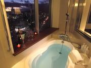 オリエンタルホテル広島(ビューバス)