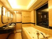 スターゲイトホテル関西エアポート(ビューバス)