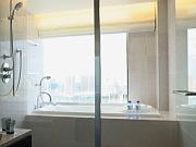 ストリングスホテル東京インターコンチネンタル(ビューバス)